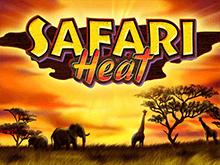 Скачать автомат в Вулкан - Safari Heat